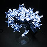 TLT Solar Powered 30 LED Star Fairy String Lights (White) - Great for Patio Garden Lawn Christmas Party Pathway Fence LED034L