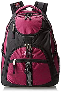 High Sierra Access Backpack by High Sierra Bags and Luggage