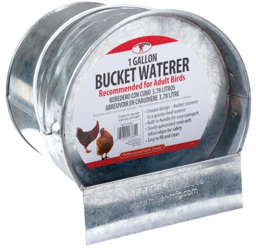 Little Giant Galvanized Bucket Waterer (Galvanized Waterer compare prices)