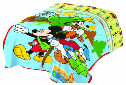 Review Of Disney Mickey Mouse Club Campfire Micro Raschel Blanket