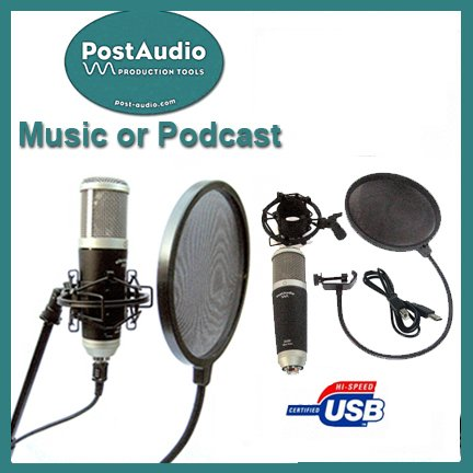 Post Audio Professional Recording Or Podcast Setup Usb Condenser Mic And Shock Mount Plus Free Pop Filter