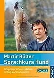 Sprachkurs Hund: Körpersprache verstehen, richtig kommunizieren Rezessionen