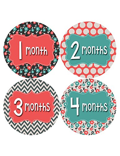 Months in Motion 407 Monthly Baby Stickers Girl Monthly Photo Milestone Month