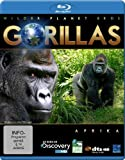 Wilder Planet Erde: Afrika - Gorillas [Blu-ray]