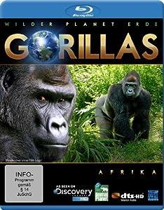 Wilder Planet Erde: Afrika - Gorillas [Blu-ray]