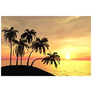 "Plastic Sunset Beach Backdrop Banner, Qty 3 pieces (36""Wx72""H EACH, 108""Wx72""L COMBINED) from Fun Express"