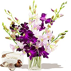 Eden4flowers Tokyo Cut Orchids & Chocolates - Flowers & Bouquets Delivered