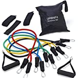 Resistance Bands Set with Door Anchor, Ankle Strap, Exercise Guide, and Carying Case (Pro Series)