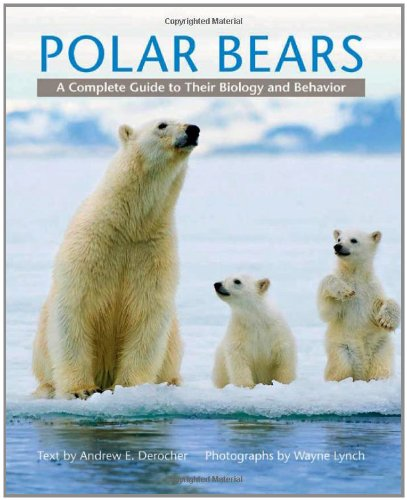 Polar Bears: A Complete Guide to Their Biology and Behavior: Andrew E. Derocher, Wayne Lynch: 9781421403052: Amazon.com: Books