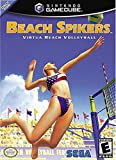 Beach Spikers Volleyball NGC