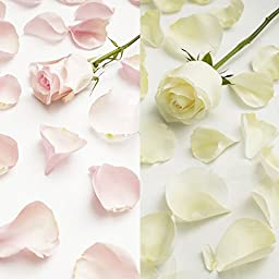 Farm Fresh Natural White - Pink Rose Petals - 3000 petals
