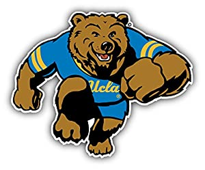 amazoncom ucla bruins ncaa football bear logo art