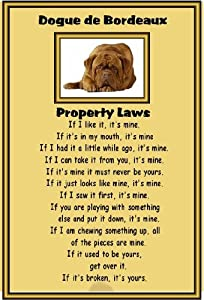 Dogue de Bordeaux - Laminated A4 sign - Property Laws