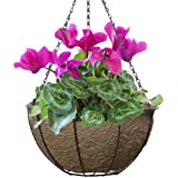 CobraCo 14-Inch Hanging Basket with EcoLiner PLB14