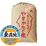 山形県産 無洗米 白米 もち米 ヒメノモチ 30kg 平成28年産 新米