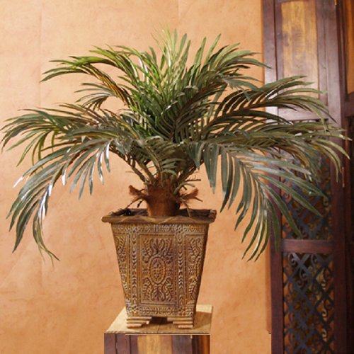 2′ Phoenix Palm Silk Floor Plant