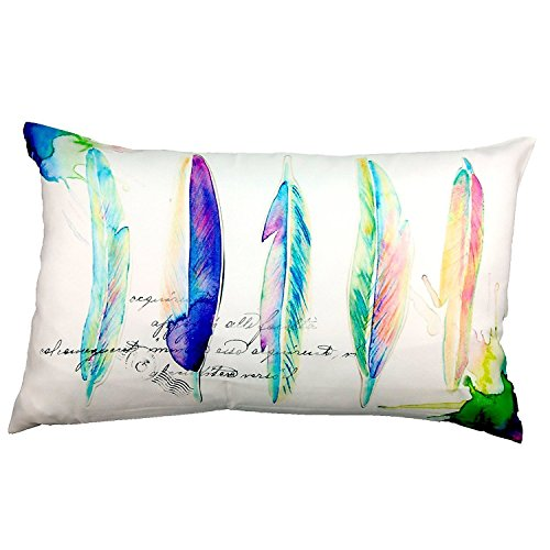 new-phantoscoper-watercolor-series-decorative-throw-pillow-case-cushion-cover-feathers-12-x-20