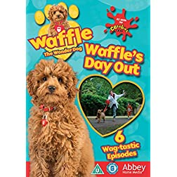 Waffle The Wonder Dog - Waffles Day Out