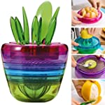 Creative Fruits Plant Multi Kitchen T...