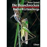 """Heuschrecken Baden-W�rttembergsvon """"Peter Detzel"""""""