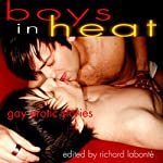Boys in Heat: Gay Erotic Stories | Richard Labonte (editor)