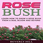 Rose Bush: Learn How to Grow a Rose Bush from a Bud, Bloom or Beyond | Beverly Hill