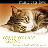 Music Cats Love: While You Are Gone ~ Bradley Joseph