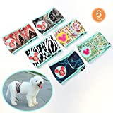 SET - 6pcs Male Small Dog Diapers Pet Puppy Belly Bands Diaper Boy Wrap Band