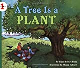 A Tree Is a Plant (Lets-Read-and-Find-Out Science)