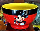 Disney Park Mickey Mouse Pretty Ceramic Cereal Salad Bowl NEW