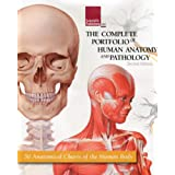 The Complete Portfolio of Human Anatomy and Pathology ~ Scientific Publishing