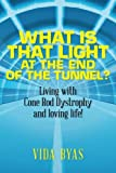 img - for What is that light at the end of the tunnel?: Living with Cone Rod Dystrophy and loving life! book / textbook / text book