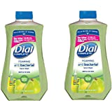 Dial Complete Foaming Antibacterial Hand Wash Refill, 32 Oz, Pack Of 2 (Fresh Pear)