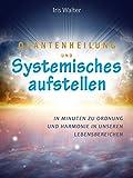 Quantenheilung und systemisches Aufstellen: In Minuten zu Ordnung und Harmonie / Praxisanleitung
