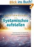 Quantenheilung und systemisches Aufst...