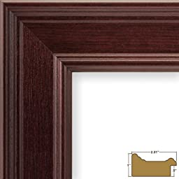 Craig Frames FM97MA2024DAC 2-Inch Wide Picture/Poster Frame in Smooth Grain Finish, 20 by 24-Inch, Mahogany