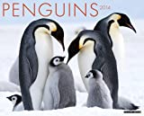 Penguins 2014 Wall Calendar