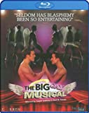 Cover art for  The Big Gay Musical [Blu-ray]