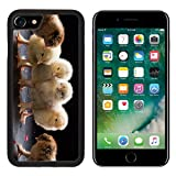 MSD Premium Apple iPhone 7 iPhone7 Aluminum Backplate Bumper Snap Case IMAGE ID: 35031862 close up small fluffy chickens on a dark studio