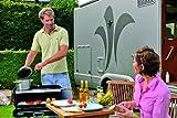 Dometic CRAMER 9103300043 Classic 1 - Koffergrill mit drei Kochplatten 50 mba...