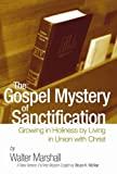 img - for The Gospel Mystery of Sanctification: Growing in Holiness by Living in Union with Christ book / textbook / text book