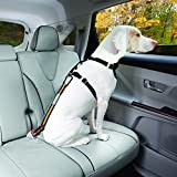 Kurgo Direct to Seatbelt Tether Car Restraint for Dogs
