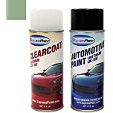 Aerosol Basic Package , DV/M7081 (2003-2006) Light Tundra Meta. . . Clearcoat : ExpressPaint Aerosol Ford Focus Automotive Touch-up Paint - Light Tundra Metallic Clearcoat DV/M7081 - Basic Package