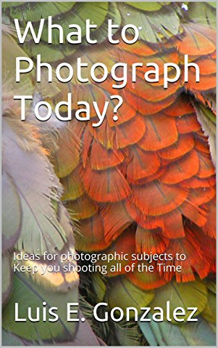 What to Photograph Today?: Ideas for photographic subjects to Keep you shooting all of the Time