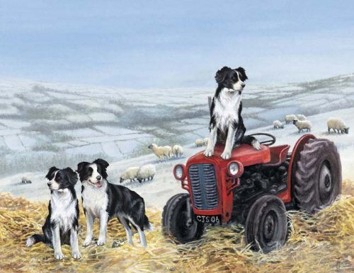 Artikelbild: Tractor Trials - Giant Pet Place Mat