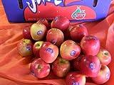 フルーツyamakiti ニュージーランド  ジャズ JAZZ りんご 1玉価格 ランキングお取り寄せ