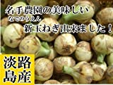 名手農園 淡路島 新たまねぎ2016年産 新玉ねぎ(わけあり) 10kg(35~45個) 期間限定サービス価格で販売中!