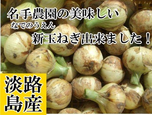 名手農園 淡路島産 新たまねぎ 2016年産  5kg(15~20個) 期間限定サービス価格で販売中!