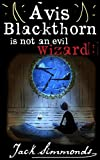 Avis Blackthorn Is Not an Evil Wizard!: (The Wizard School Series, Teen Fantasy and Magic, Book 1)