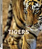 Tigers: A Celebration of Life